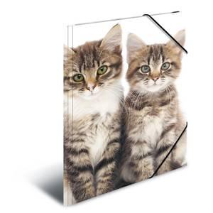 Bilde av HERMA strikkmappe i plastmateriale, A4, Dyr, Katt
