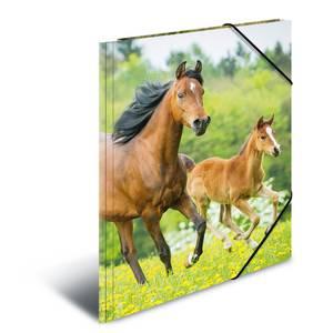 Bilde av HERMA strikkmappe i plastmateriale, A4, Dyr, Hest