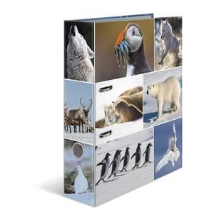 Bilde av HERMA ringperm i kartong, Dyrene i Arktis (10